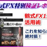 鶴式FX スキャルピングプラス 最強の特典を追加!!